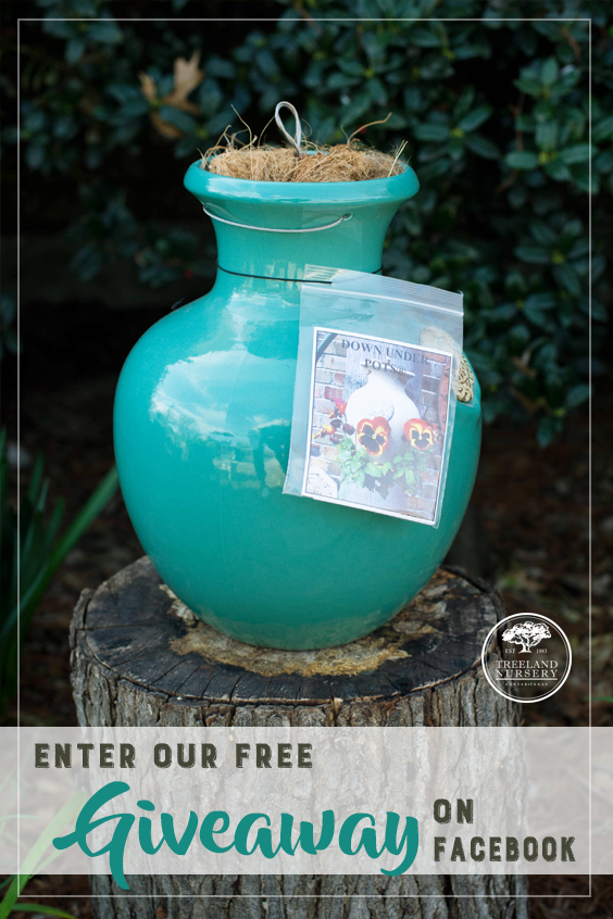 Enter to win a free Down Under Pot