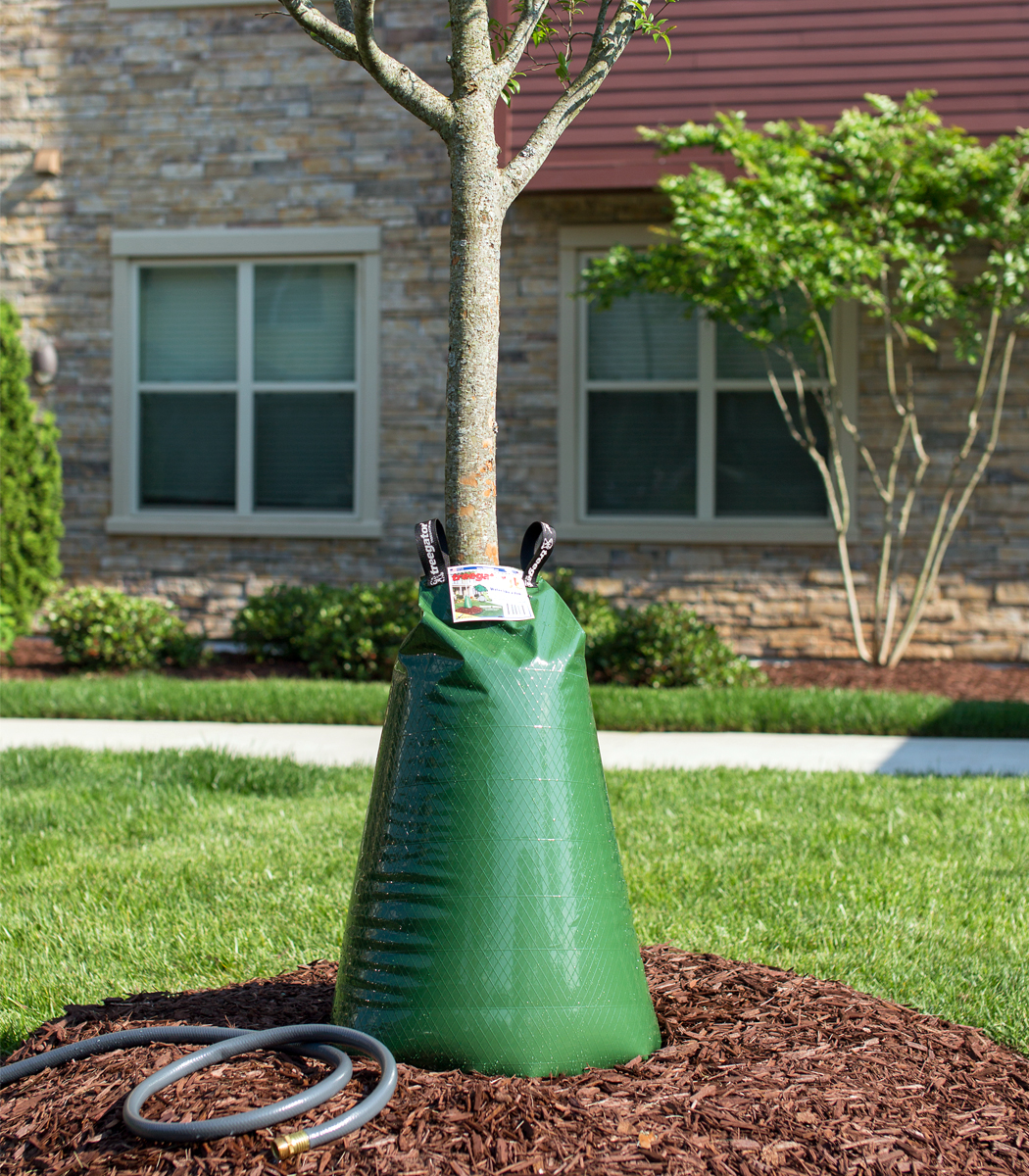 Tree Gator Watering Bags For Trees Dallas Tx Treeland