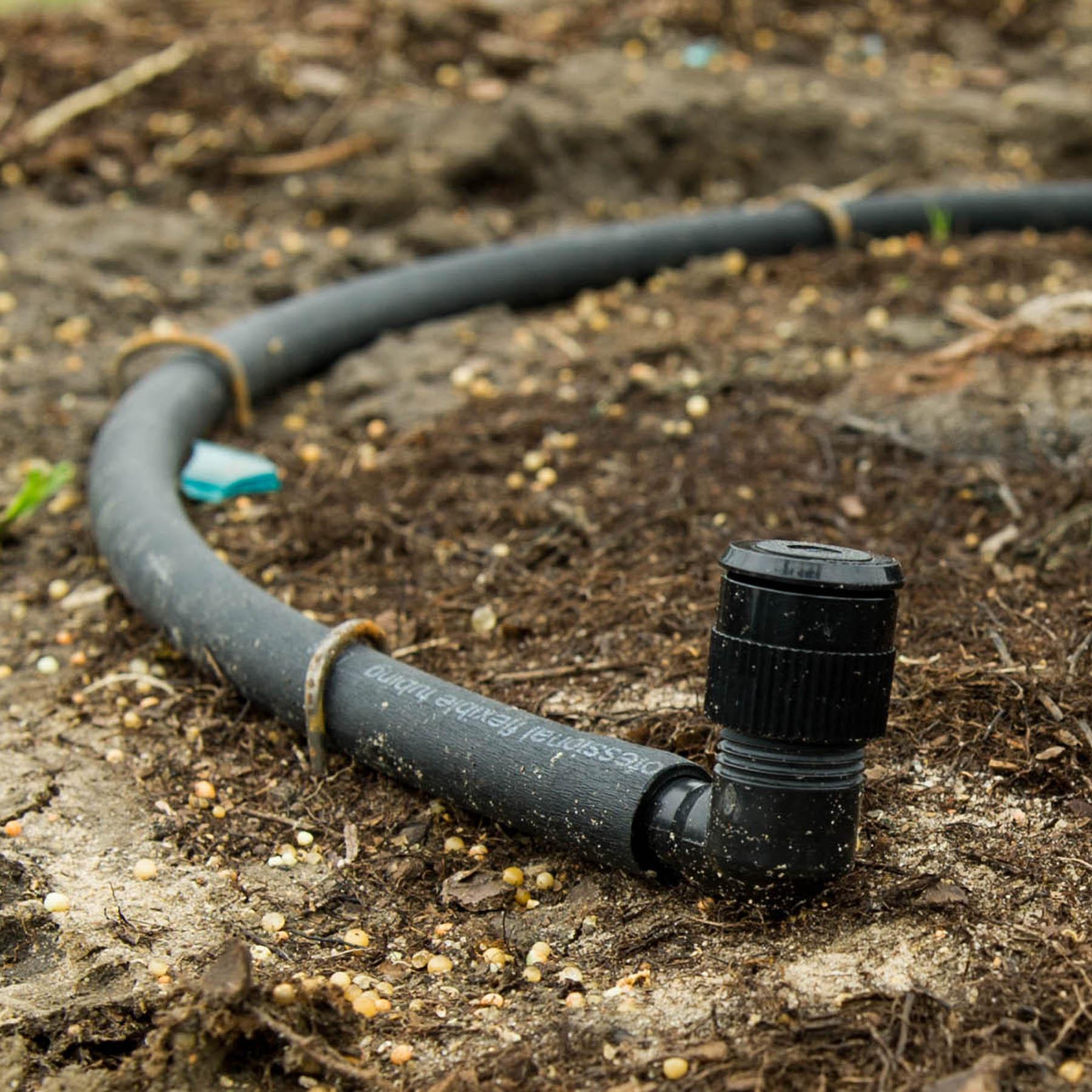 Using Bubblers to Water Trees - Dallas, TX - Treeland Nursery