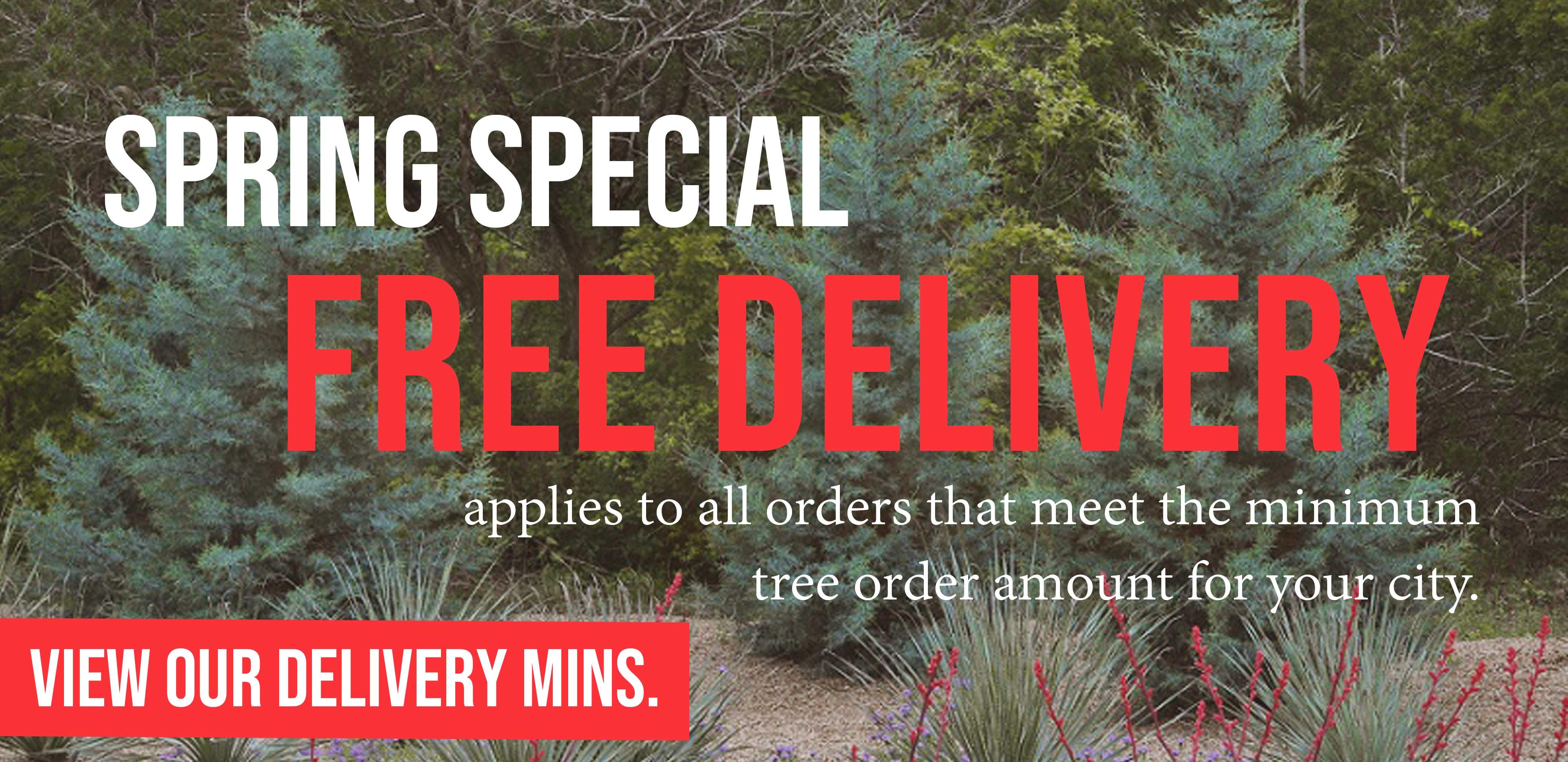 Dallas Texas 50 Acre Tree Farm