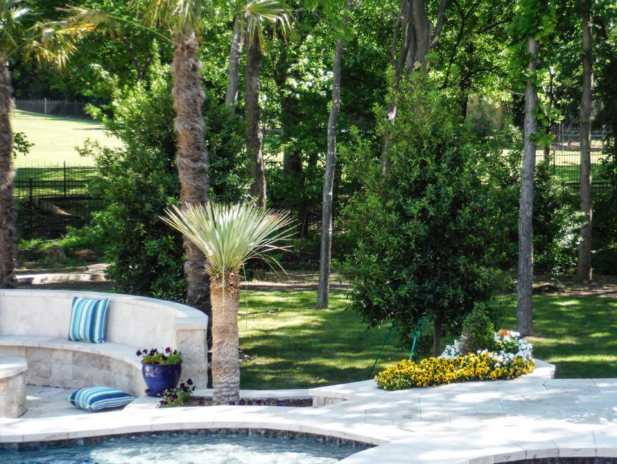 Eagleston Hollies installed behind a pool.