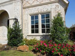 Nellie R. Stevens Holly trees planted by Treeland Nursery in a frontyard flowerbed.