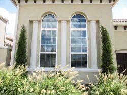 Taylor Junipers flanking a window in a frontyard flowerbed. Installed by Treeland Nursery.